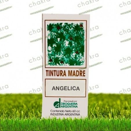 Tintura Madre de Angelica x 60ml